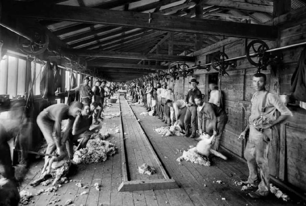 FLASHBACK: Burrawang Station, Condobolin: 101 powered shearing stands, 5000 bales of wool in 1884, about 250 workers, rail tracks along the board.