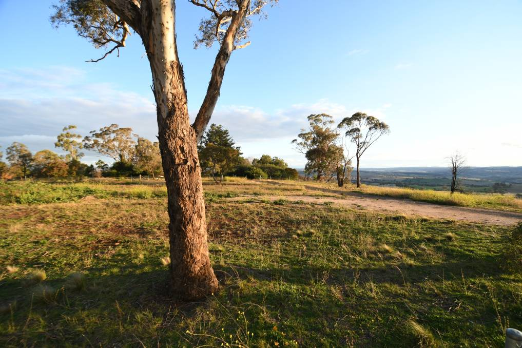 COMING SOON: Part of the proposed site for a go-kart track on Mount Panorama. Photo: CHRIS SEABROOK